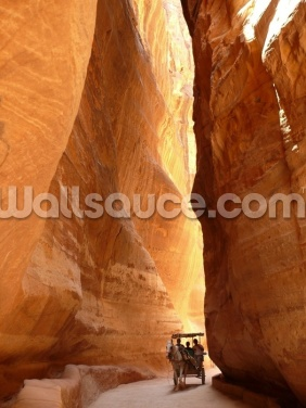 Narrow Gorge at Petra, Jordan Wallpaper Wall Murals