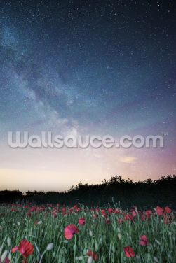 Field of Starlight Wallpaper Wall Murals