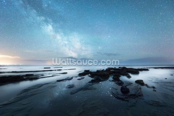 Reflections of Night Wallpaper Wall Murals