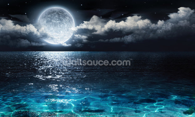 Glowing Ocean Moon Wallpaper Wall Murals