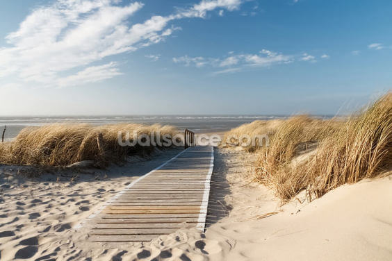 Windswept Beach Boardwalk Wallpaper Wall Murals