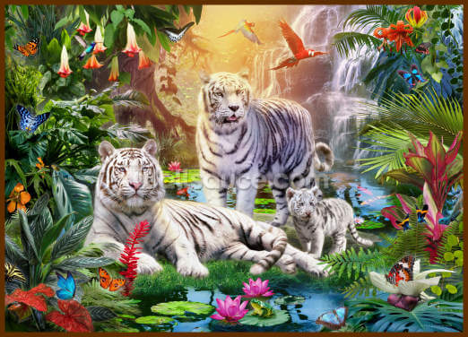 Family of White Tigers Wallpaper Wall Murals