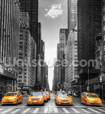New York Yellow Taxis Wallpaper Wall Murals