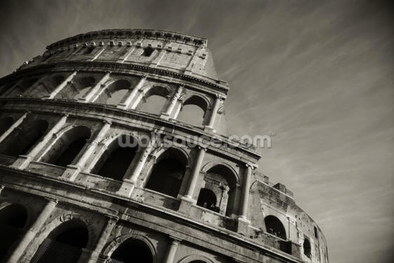 Colosseum - Black and White Wallpaper Wall Murals