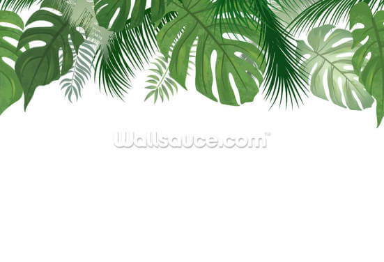 Monstera Wallpaper Wall Murals