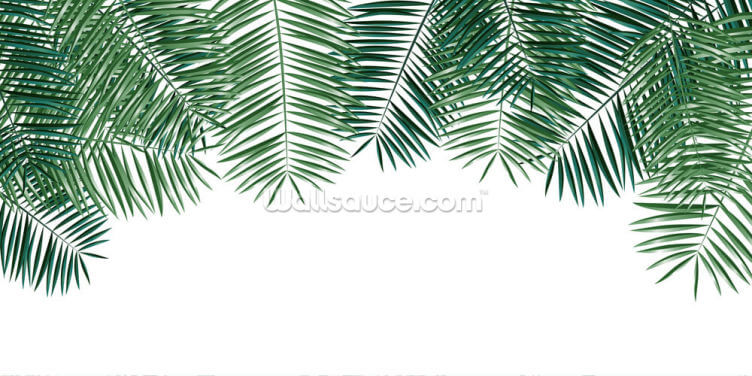 Fine Palm Leaves Wallpaper Wall Murals