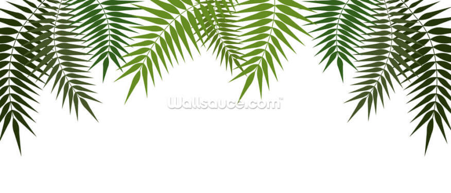 Dark and Light Palms Wallpaper Wall Murals