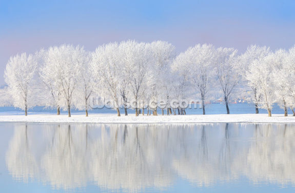 Winter Frost Wallpaper Wall Murals