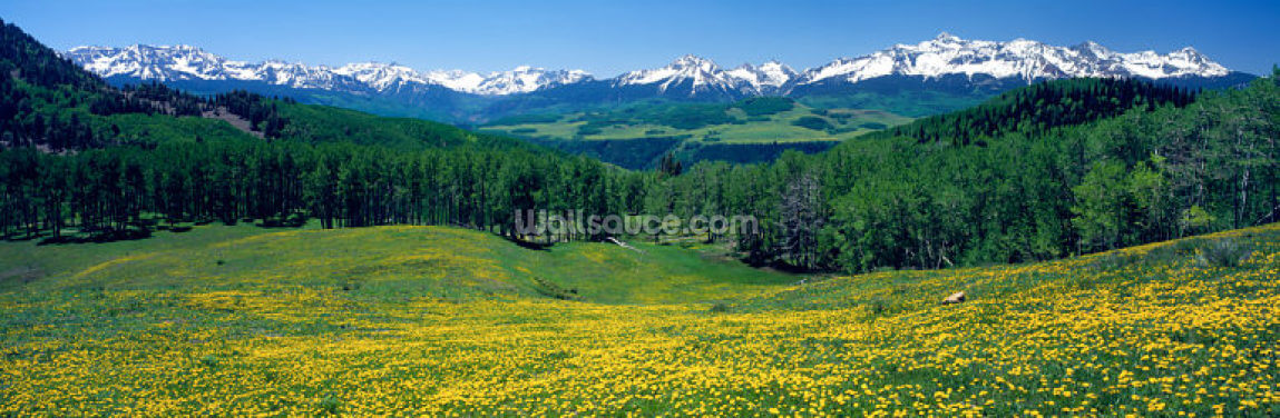 San Miguel Mountains Wallpaper Wall Murals