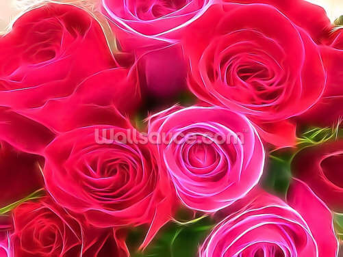 Pink and Red Rose Bouquet Wallpaper Wall Murals
