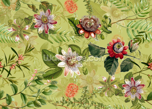 Green Garden Wallpaper Wall Murals