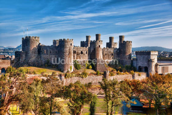 Conwy Castle in Wales, United Kingdom Wallpaper Wall Murals