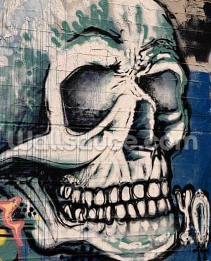 Graffiti - Skull Face Wallpaper Wall Murals