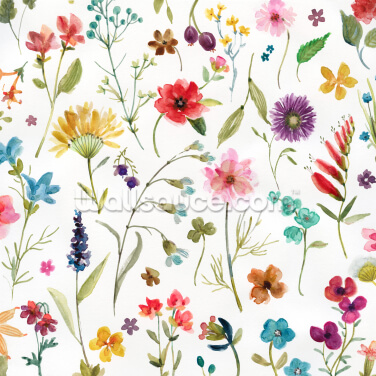 Gathered Wildflowers Wallpaper Wall Murals