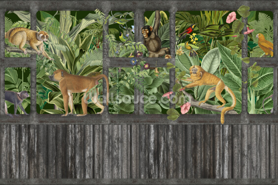 Monkeys and the Lost Jungle Place Wallpaper Wall Murals