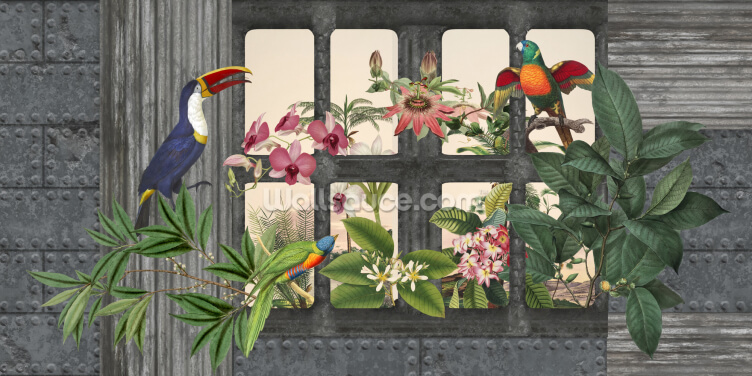 Lost Paradise Birds Wallpaper Wall Murals