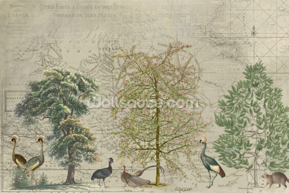 Nordic Birds Wallpaper Wall Murals
