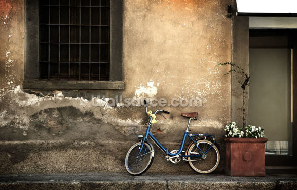 Old Italian Style Bicycle Wallpaper Wall Murals