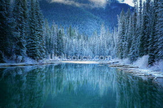 Wonder Winter Land Wallpaper Wall Murals