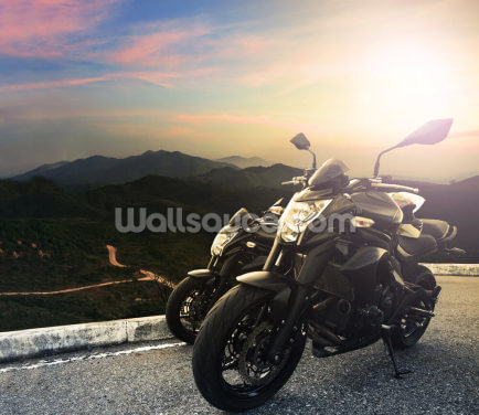 Motorbike Vista Wallpaper Wall Murals