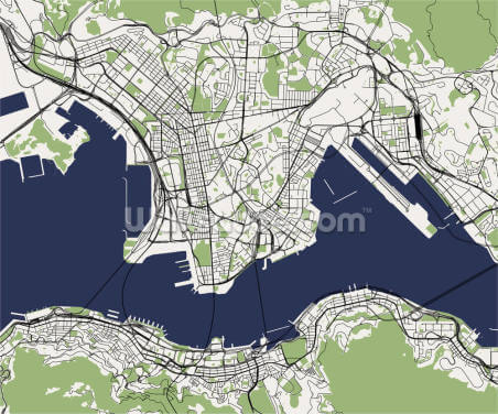 Hong Kong Illustrated Map Wallpaper Wall Murals