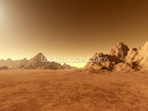 Mars Surface Wallpaper Wall Murals