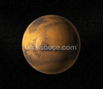 A View of Planet Mars Wallpaper Wall Murals