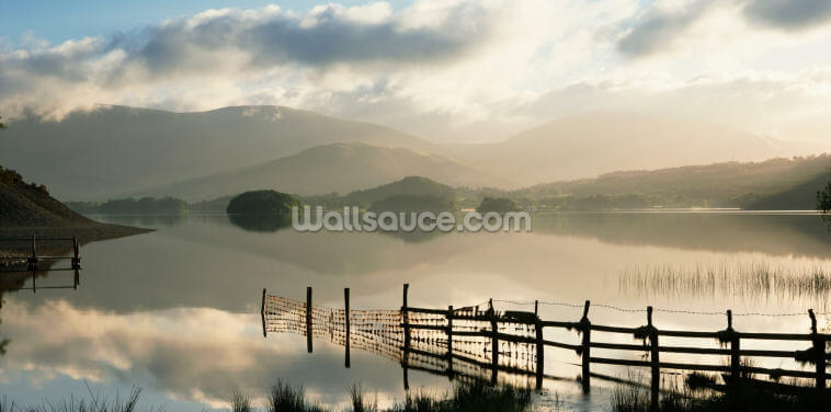 Fence in the Lake Wallpaper Wall Murals