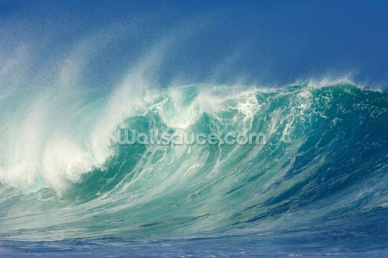 Big Waves, North Shore, Hawaii Wallpaper Wall Murals