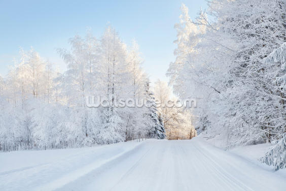 Snowy Trees Wallpaper Wall Murals