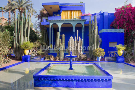 Le Jardin Majorelle, Marrakech Wallpaper Wall Murals
