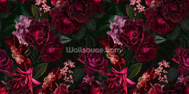 Dark Fuchsia Florals Wallpaper Wall Murals