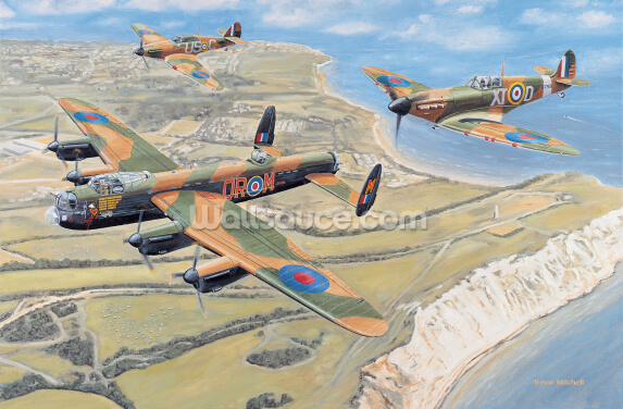 Battle of Britain Memorial Flight Wallpaper Wall Murals
