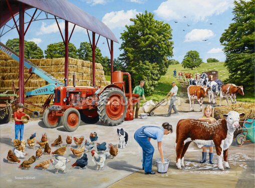 Busy Farmyard Wallpaper Wall Murals
