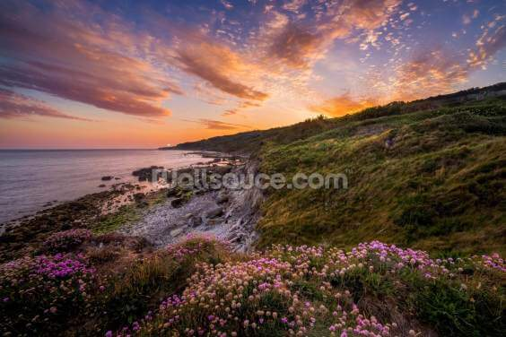 Sunset flowers with a lighthouse shining in the distance Wallpaper Wall Murals