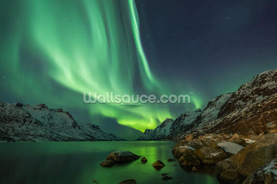 Aurora Borealis in Tromsø Wallpaper Wall Murals