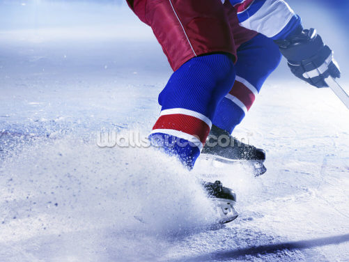 Ice Hockey Ice Wallpaper Wall Murals
