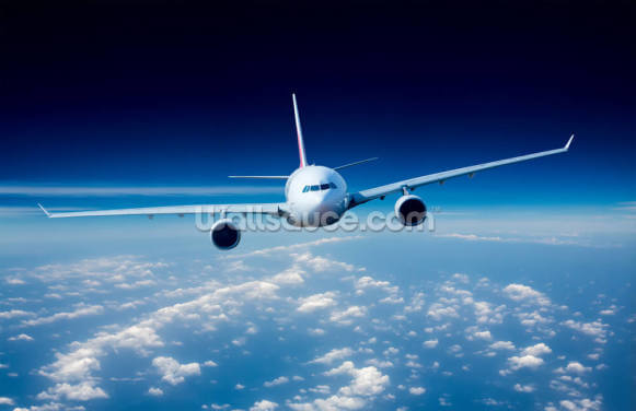 Passenger Airliner Wallpaper Wall Murals