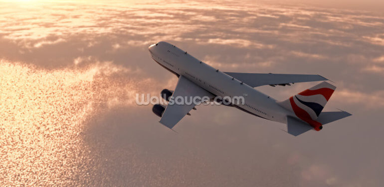 Commercial Airliner Wallpaper Wall Murals