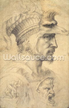 Head of a Warrior Wallpaper Wall Murals