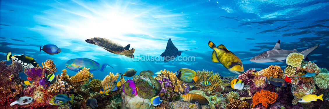 Sea Life Coral Reef Panorama Wallpaper Wall Murals