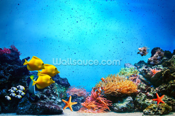 The Blue Sea Wallpaper Wall Murals