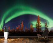 Northern Lights Bow wall mural kitchen preview