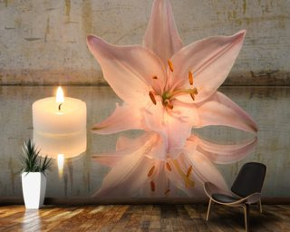 Candle and Lilly wallpaper mural