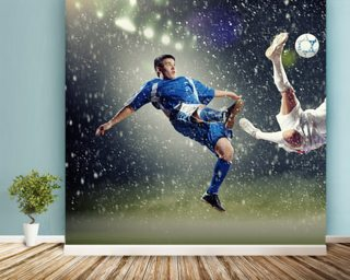 Other Sport Wall Murals