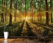Spring forest wallpaper mural kitchen preview