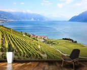 Lavaux Region Vineyards wall mural kitchen preview