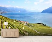 Lavaux Region Vineyards wall mural living room preview