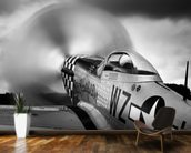 p-51 Fighter wall mural kitchen preview