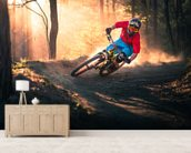 Mountain Biker wall mural living room preview